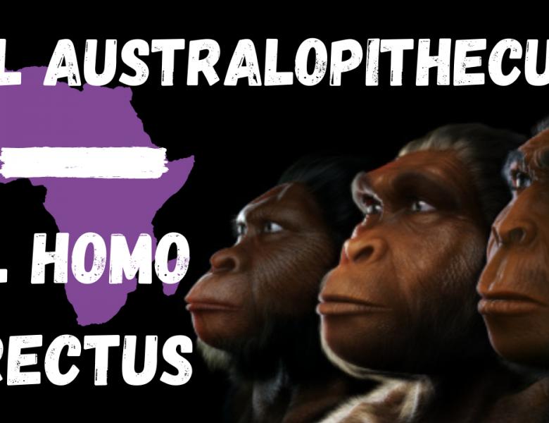 El género Homo en África